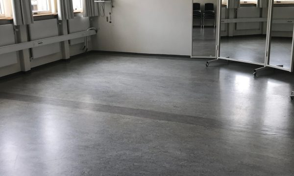 Bevægelsesrummet